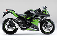 Ninja 250 ABS KRT Edition